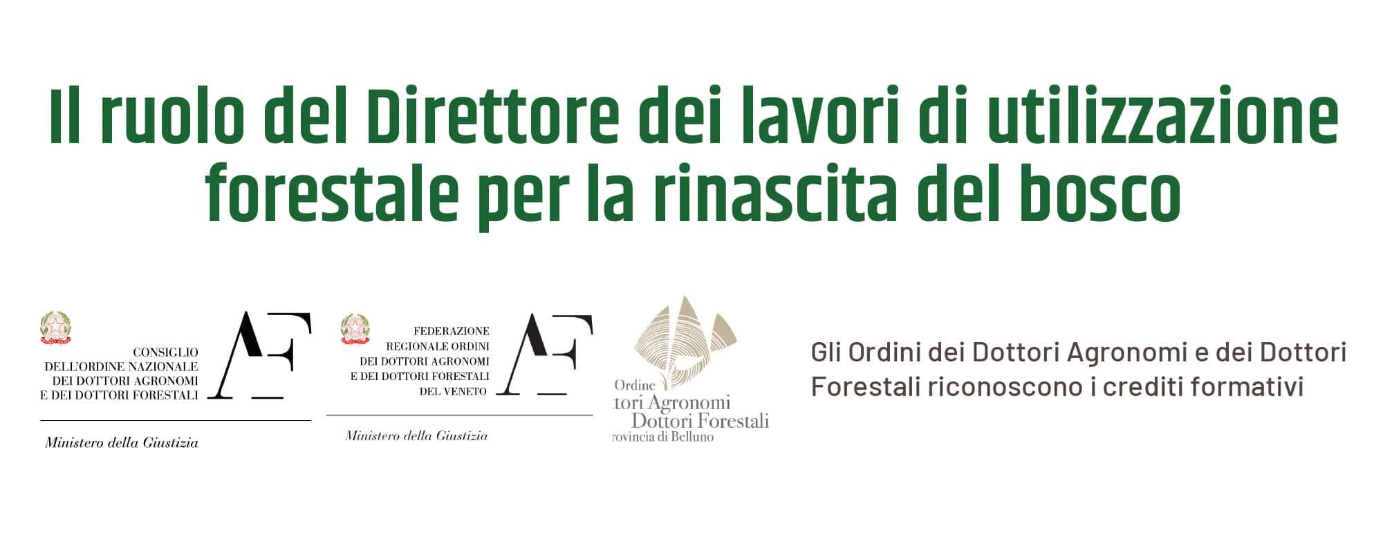 ODAF Festival Foreste 2020